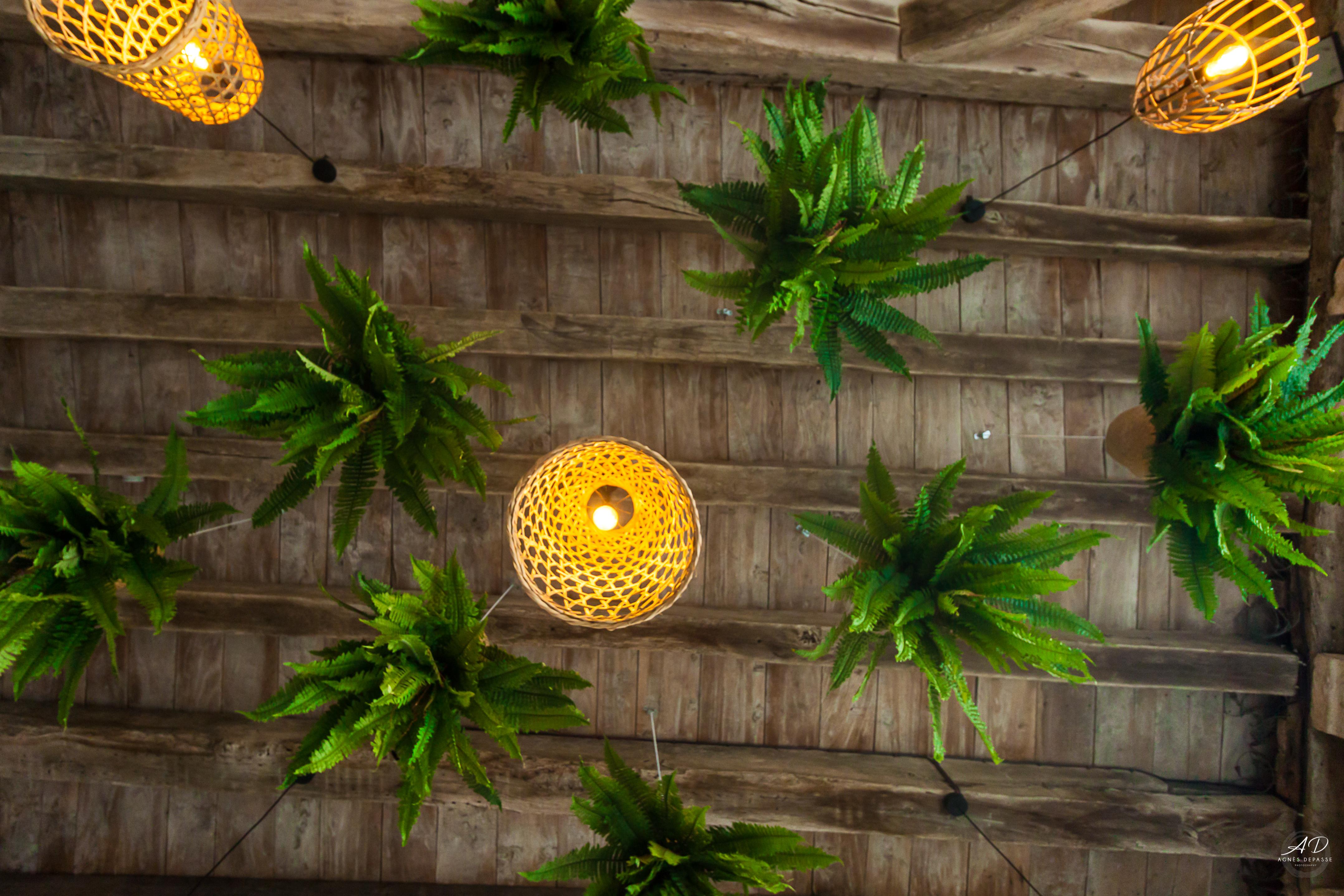 Plafond bois terrasse suspensions matières naturelles et fougères suspendues projet restaurant Paco Dada Eymet